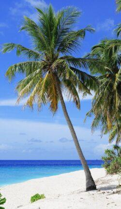 Explora - Costa Norte